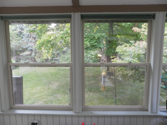 view of back yard through windows