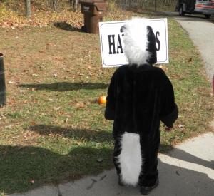 Skunk costume halloween