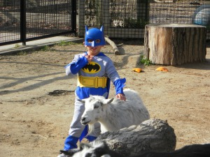 Batman gets his goat