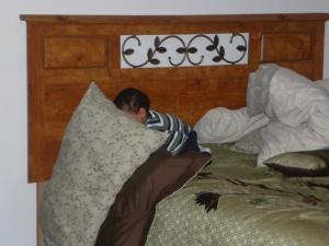 so long, nasty pillows