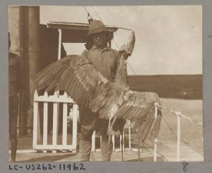 After the sixth child, Teddy Roosevelt kept a shot gun filled with bird shot next to his bed. (Image: Kermit Roosevelt)