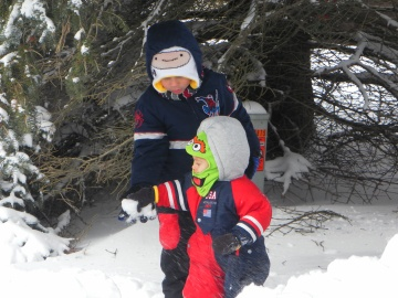 snowball school