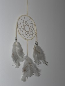 Custer's dream catcher