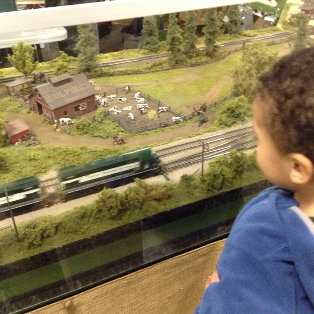 train watching
