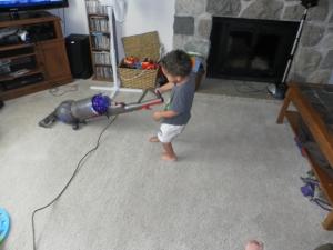 Free range vacuuming.